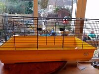 Rabbit / Guinea Pig Cage (Indoor)- 100 cm long