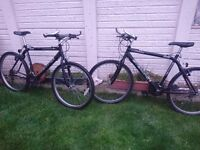 MOUNTAIN BIKES x 2 *****must go today***** offers