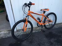 Freespirit Chaotic mountain bike