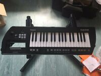 Roland Lucina AX 09 Synthesiser