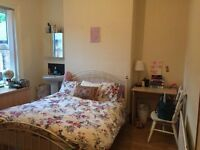 6 bedroom house with 4 rooms available for month of July. Everything you need including bedding