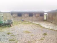 Stables grazing and manarge for rent