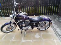 2014 Harley 72, 1200cc Voodoo Purple