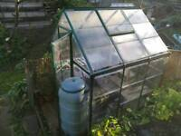 Greenhouse, water butt and staging.