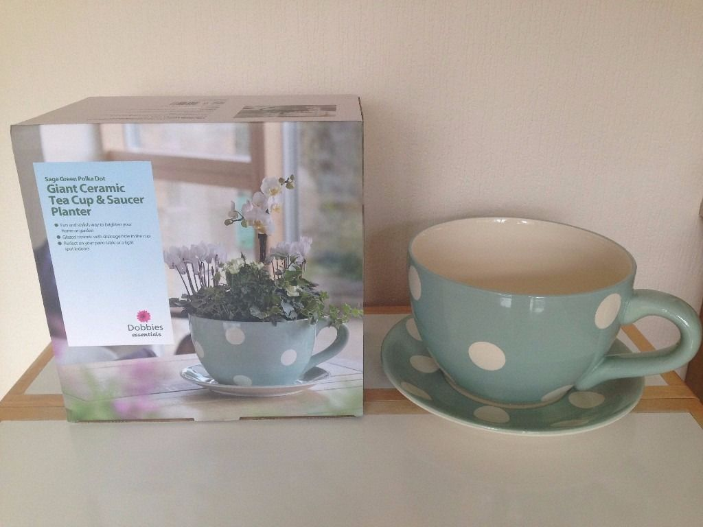 Dobbies Giant Ceramic Tea Cup And Saucer Indoor Outdoor Planter