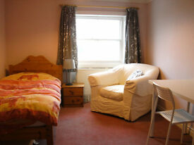 Room to rent for professional or graduate