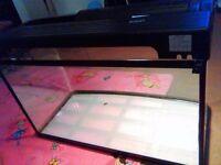 Interpet Fish Pod Glass Aquarium Fish Tank + Bird Cage