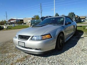 1999 Ford Mustang 35 th anniversary GT ROLL BAR
