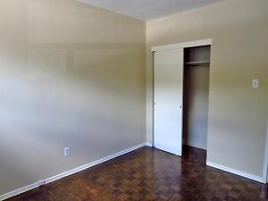 Old South London Bright & Spacious 1 Bedroom Apartment for Rent London Ontario image 3