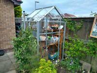 Greenhouse - aluminium glazed 4ft x 4ft