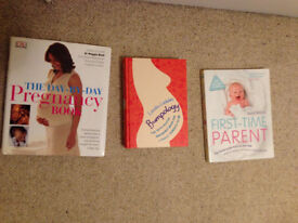 Three pregnancy books (Bumpology, First-Time Parent, The Day-by-Day Pregnancy Book) - Used