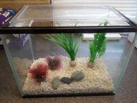 20l fish tank with gravel, air pump and filter, perfect starter aquarium