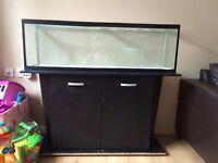 Aquarium or reptile tank large