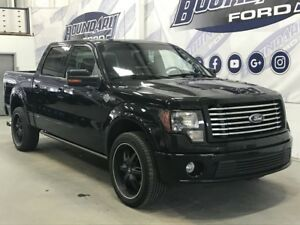 2010 Ford F-150 SuperCrew Harley Davidson Edition 5.4L