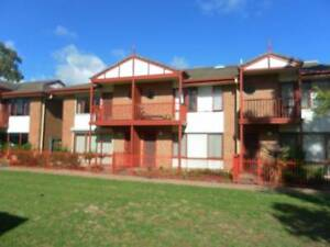 140pw including bills and internet Marion Area Oaklands Park Marion Area Preview