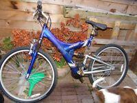 Mountain Bike dual suspension