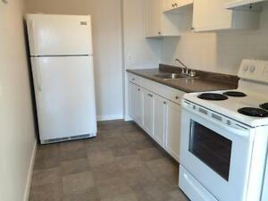 RECENTLY UPDATED 2 BD IN CENTRAL LOCATION! 321- 67 Notch Hill Rd Kingston Kingston Area image 5