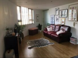 Gorgeous entire apt in Stoke Newington *bills included* very light secure+equidistant to Dalston hub