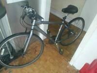 Trek mountian bike