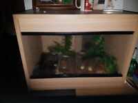 2ft vivarium.