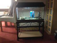 64 L Fish tank