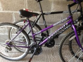 Universal rampage 15 speed his and hers mountain bikes his in black hers in moave