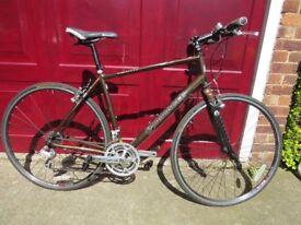 Evans Pinacle Borealis 3.0 Hybrid Bike