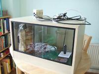 Vivarium suitable for gecko for sale