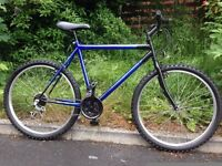 Medium / Large Mountain Bike with Road Forks