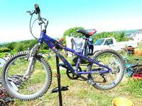 Dawes Kids bicycle