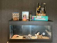 , vivarium and accessories