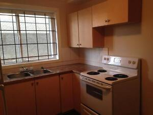 One bedroom apartment avaibale - Central location