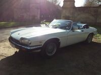 Full restored xjs new hood four new tyres full mot fantastic condition inside and out
