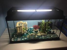 Fish/Turtle Tank for Sale including Accessories