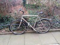 Ridgeback comet city bike