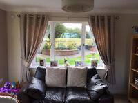 Carina Ecru & Seine Plain Woven Eyelet Lined Curtains (W)167cm (L)183cm x 2, Cushions & Lampshades