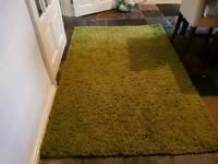 Bedroom or living room rug