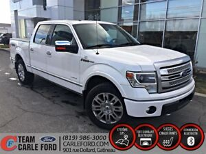2013 Ford F-150 Platinum Nav