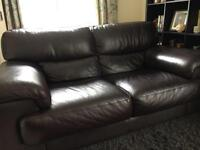 "2 seater ""Sofology"" brown leather sofa"