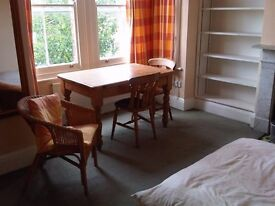 Large room available to international and/or mature student in lovely, quiet, calm house in Fiveways
