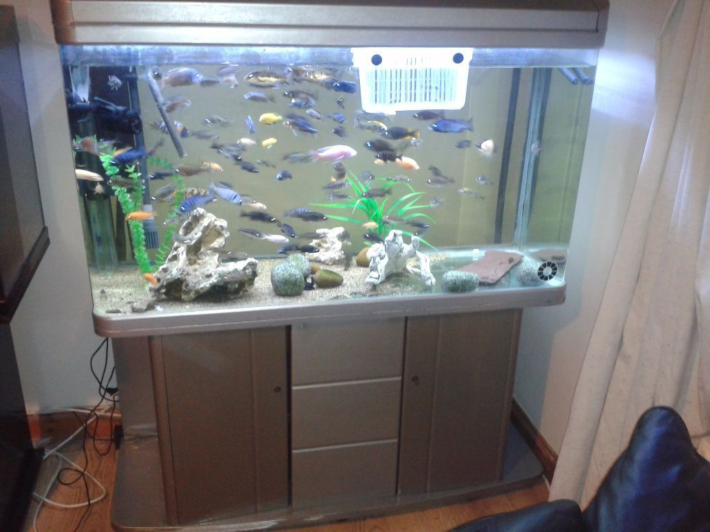 Huge 400 litre 4ft boyu fish tank stand reinforced for Fish tank price