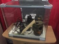 Fish tank plus all you need barring the fish inc stand
