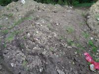 As dug topsoil