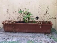 Large Original Clay Flower Bed/Window Pot