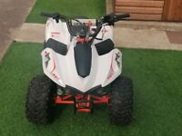 Kayo Fox 70cc