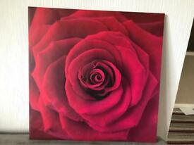 Large flower print picture on canvas
