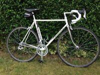 Pinarello Treviso steel frame road bike