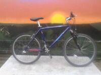 SCOTT Peak Cromo 4130 Light Weight Mountain Bike Large