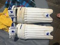 Warrior pads and gloves