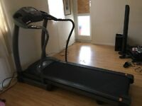 Treadmill Horizone Elite 507